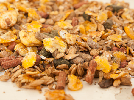 basic care: sportive muesli with corn flakes for horses. close up. selective focus