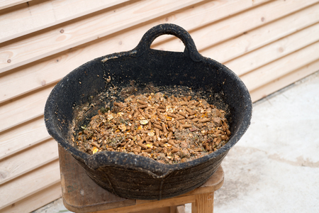 bowl with muesli for sportive horse