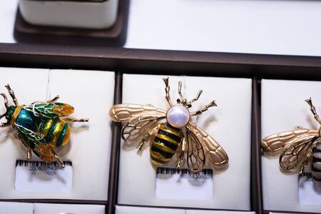 jewelry retail showcase display different bee brooches Archivio Fotografico