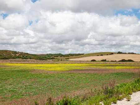 view of green rural area against clouds sky. Spain, Andalusia