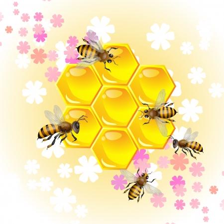 Bloemen achtergrond met honing en bijen Stockfoto - 13613625