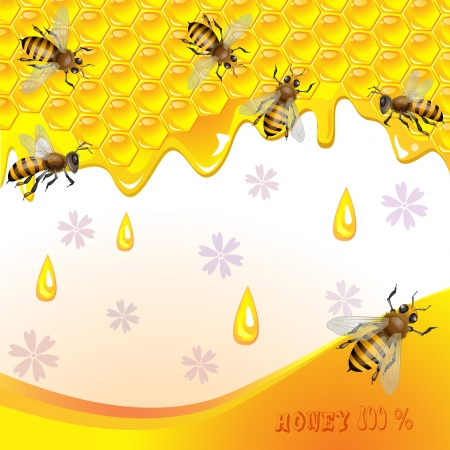 buzz: Floral background with honey and bees Illustration