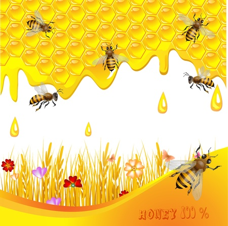 bee swarm: Floral background with honey and bees Illustration