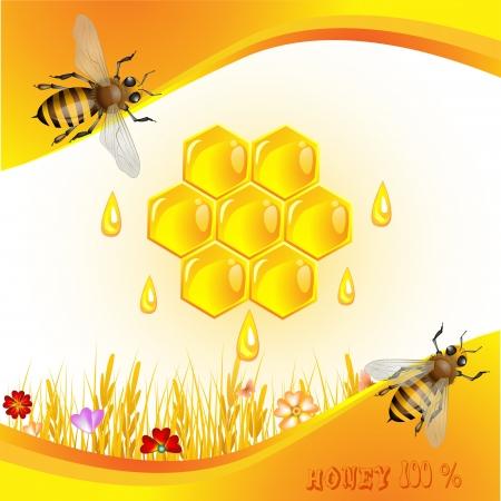 abejas panal: Fondo floral con la miel y las abejas Vectores