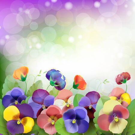 Floral background, colorful pansies flowers in the meadow Stock Vector - 14211709