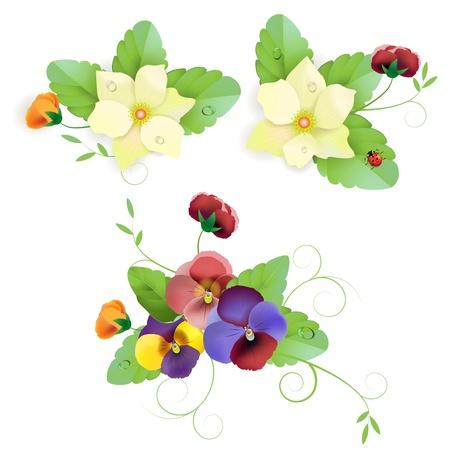 優しいパンジーの花のセット