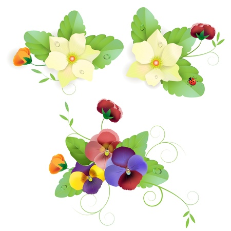 Set of gentle floral with pansy Vector