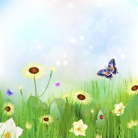 Floral background,  flowers in the meadow Vector