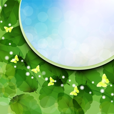 Background with nature green leaves and sky Stock Vector - 14477054