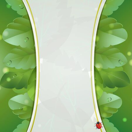 Background with nature green leaves Vector