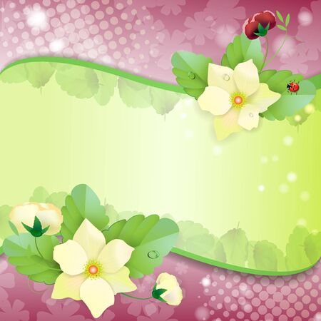 Floral background, colorful pansies flowers Stock Vector - 14708069