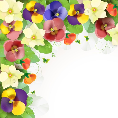 Floral background, colorful pansies flowers Stock Vector - 14708071