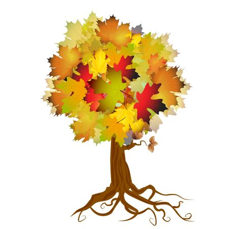 Autumn tree and leaves Stock Vector - 15066058