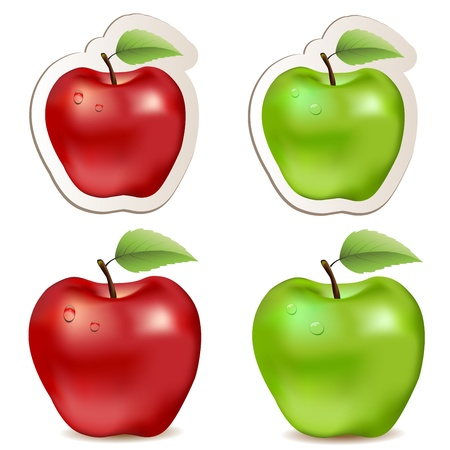 big apple: Big shiny red and green apples