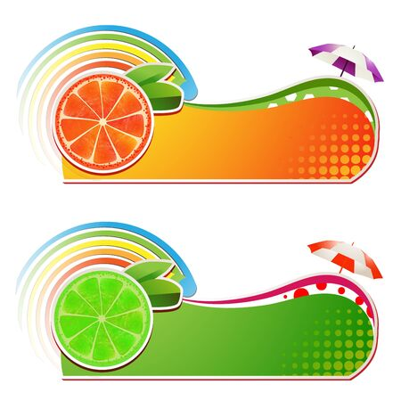 mellow: Slices grapefruit and lime ,juicy fruit,banner Illustration