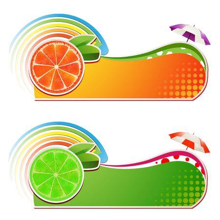 gastronomic: Slices grapefruit and lime ,juicy fruit,banner Illustration