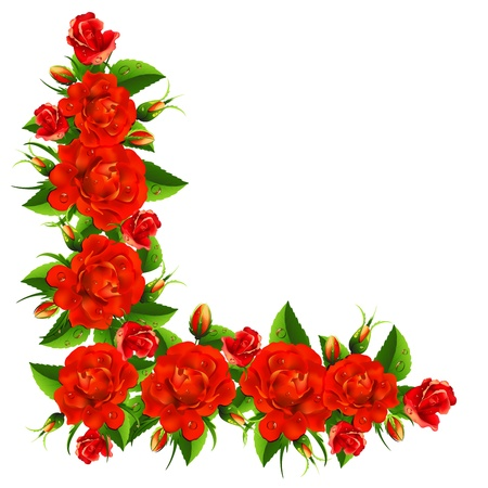 Beautiful bouquet from roses Vector