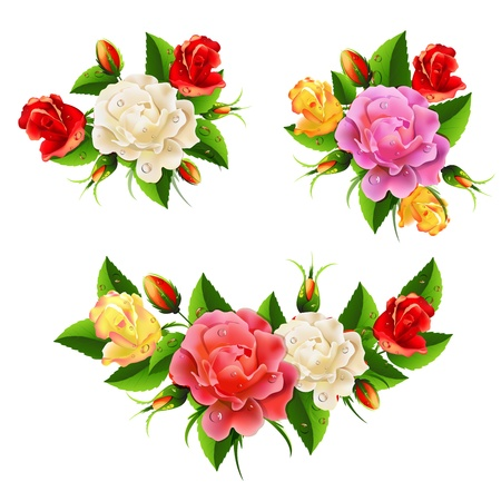 Bouquet whit roses Vector