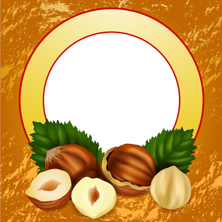 Hazelnuts with leaves  Stock Vector - 23836022