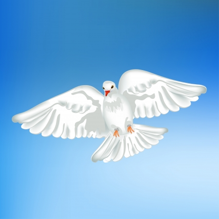 White pigeon flying Vector