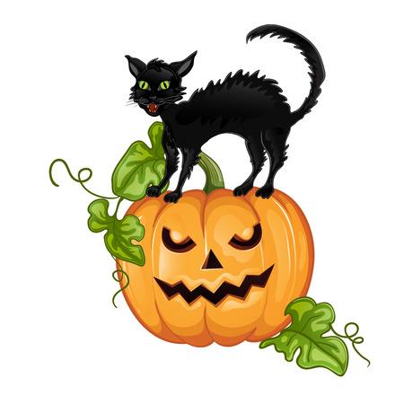 Schwarze Katze sitzt auf Halloween-Kürbis