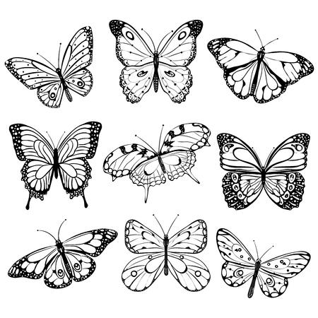 silhouette papillon: Papillons noir et blanc Illustration