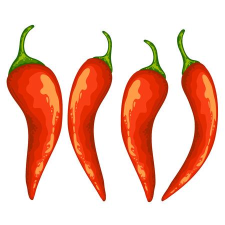 赤唐辛子のセット  イラスト・ベクター素材