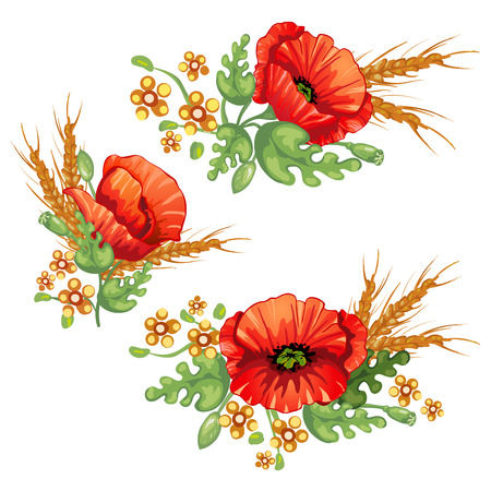Flower bouquet .Red poppies flowers and ears of wheat