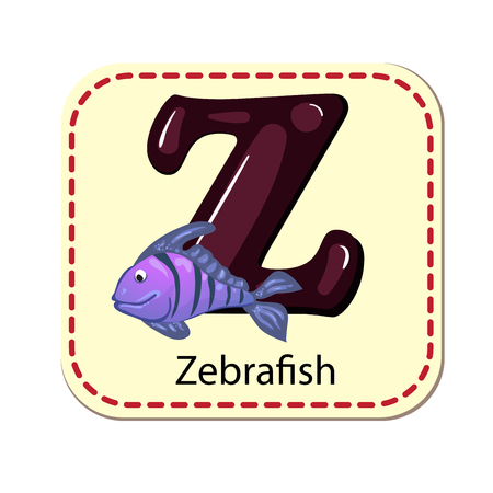 zebrafish: Illustration of isolated alphabet Z for zebra-fish Illustration