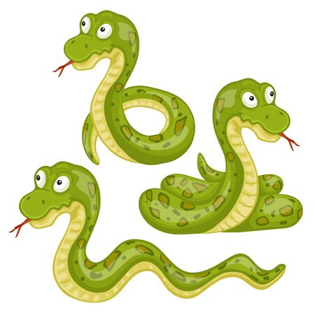 venomous snake: Illustration of scary snakes on a white background