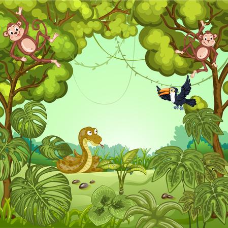 serpiente caricatura: Ilustración de dibujos de animales en la selva. Mono, tucán y la serpiente. Vectores
