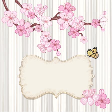 Kirschblüte, Zweig mit rosa Blüten.