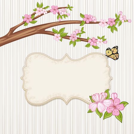 springtime: Springtime background . Cherry blossom, branch with pink flowers.