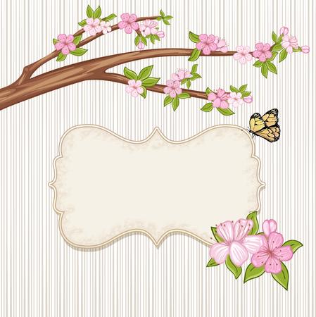 springtime: Springtime background . Cherry blossom, branch with pink flowers.