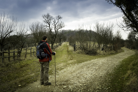 divergence: Man hiking in spring arriving at a divergence of two roads and wandering which one to take. Stock Photo