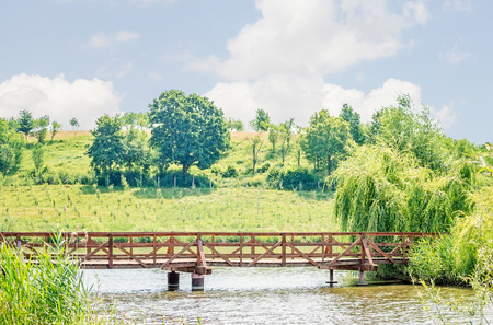 footbridges: Bridge made of wood over a lake with a vineyard in the background.