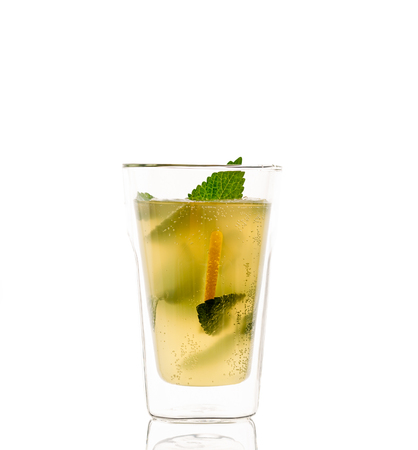 Homemade lacto-fermented refreshing drink with lemon slices and sprigs of mint and lemon balm. Reklamní fotografie