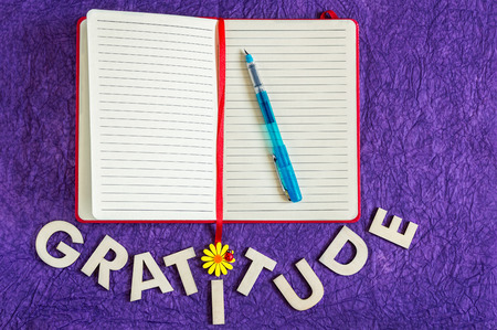 Top view of a red cover journal with a transparent blue pen on top and word gratitude made of wooden letters below on a purple veined textured background. Reklamní fotografie - 83493821