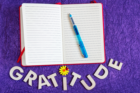 Top view of a red cover journal with a transparent blue pen on top and word gratitude made of wooden letters below on a purple veined textured background.