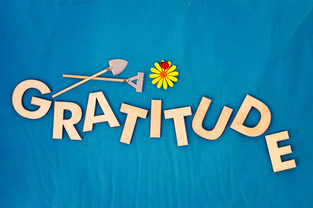 Top view of capital letters made of wood spelling the word gratitude on light blue background with yellow daisy, ladybug, miniature shovel and rake, cultivate gratitude concept.