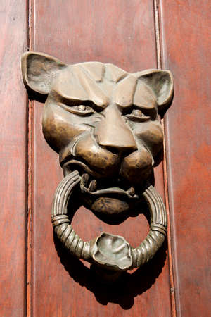 knocker: Door knocker lion shaped Stock Photo