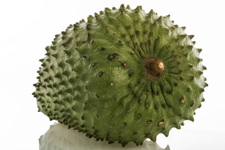 annona: Tropical fruit - Soursop (Annona muricata)