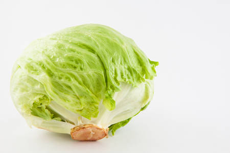 lactuca: Crisphead lettuce (Lactuca sativa) isolated in white background