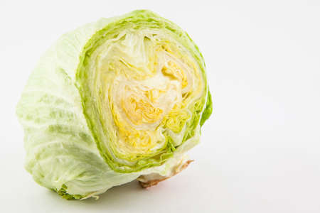 lactuca sativa: Crisphead lettuce (Lactuca sativa) isolated in white background