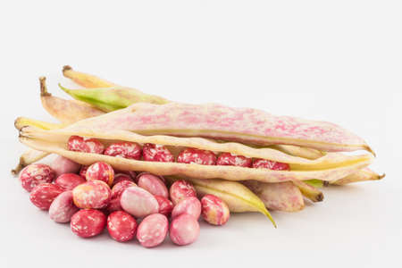 Unripe common beans (Phaseolus vulgaris) isolated in white background