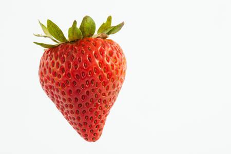 Strawberry (Fragaria ananassa) isolated on white background Stock Photo