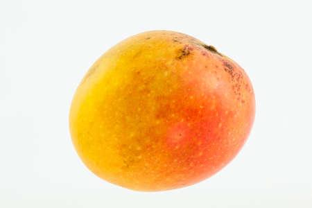 Mango (Mangifera indica) isolated on white background