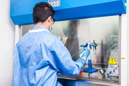 Young scientist working in a safety laminar air flow cabinet at laboratory Standard-Bild