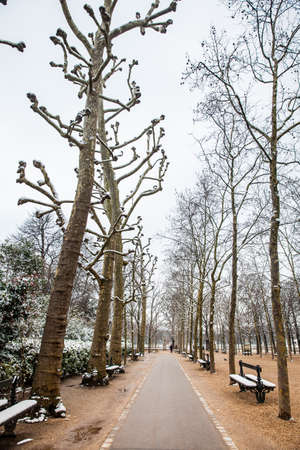 PARIS, FRANCE - MARCH, 2018: The Luxembourg Palace garden in a freezing winter day just before spring
