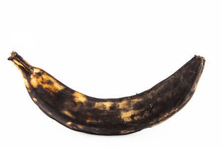 Very ripe plantain or Green Banana (Musa x paradisiaca)  isolated in white background